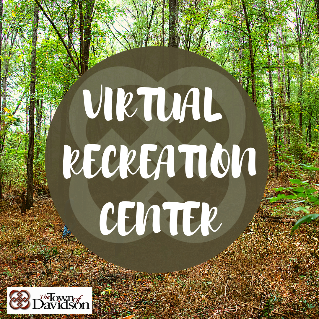 Virtual Recreation Center (2)